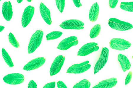 Pattern of fresh green mint leaves on a white background. Top view. Nature background. Stock fotó