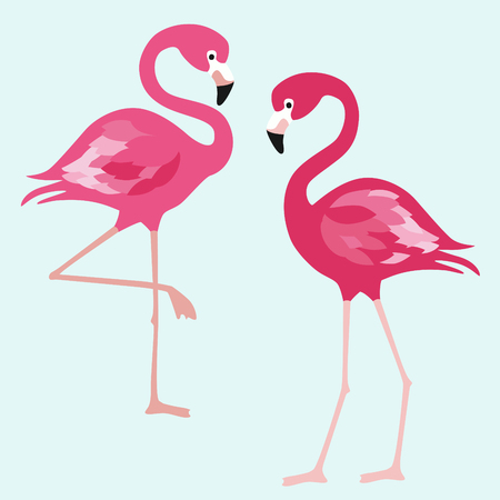 Flamingo. Exotic birds on blue background. Vector trendy illustration.