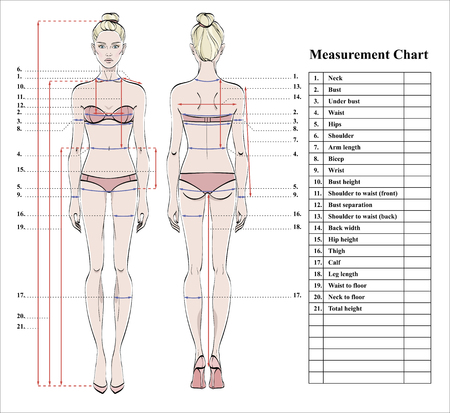 Woman body measurement chart. Scheme for measurement human body for sewing clothes. Female figure: front and back views. Template for dieting, fitness. Vector. Фото со стока - 97129644