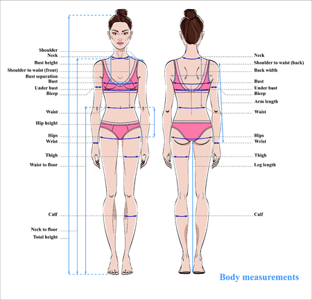 Woman body measurement chart. Scheme for measurement human body for sewing clothes. Female figure: front and back views. Vector. Vettoriali