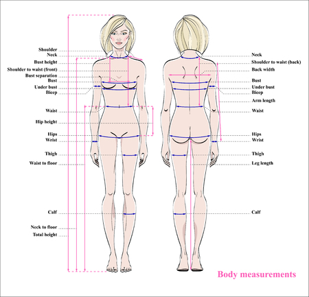 Frauenkörper-Maßtabelle. Schema für die Messung des menschlichen Körpers zum Nähen von Kleidung. Weibliche Figur: Vorder- und Rückansicht. Vektor. Vektorgrafik