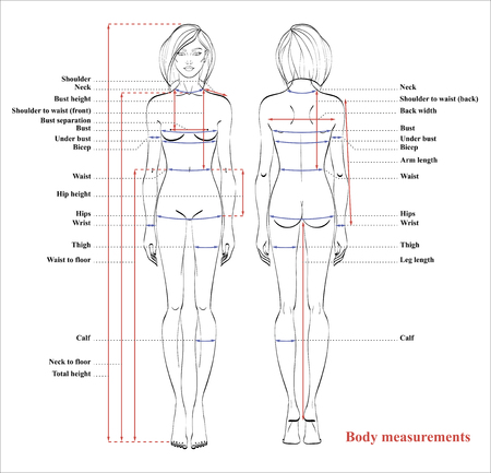 Woman body measurement chart. Scheme for measurement human body for sewing clothes. Female figure: front and back views. Vector. Stock Illustratie