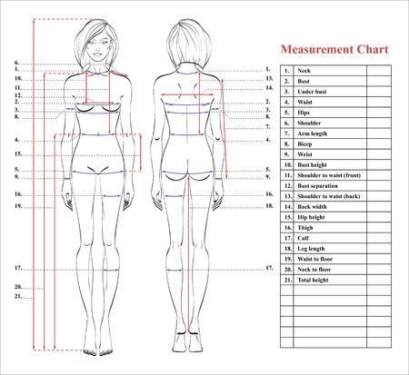Tabla de medición del cuerpo de la mujer. Esquema para medir el cuerpo humano para coser ropa. Figura femenina: vistas frontal y posterior. Plantilla para dietas, fitness. Vector. Ilustración de vector