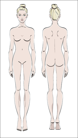 Female figure: front and back. Color vector. Human body in linear style. Çizim