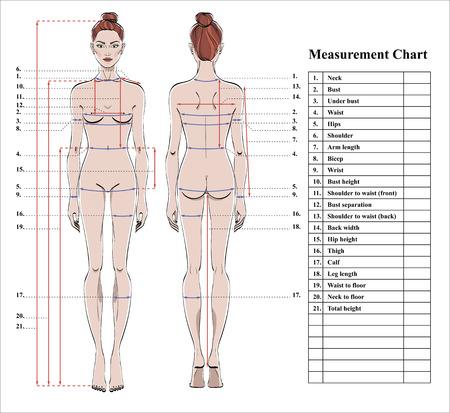 Tableau de mesure du corps de la femme. Schéma de mesure du corps humain pour coudre des vêtements. Figure féminine: vues avant et arrière. Modèle de régime, fitness. Vecteur.