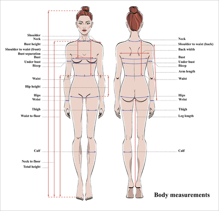 Woman body measurement chart. Scheme for measurement human body for sewing clothes. Female figure: front and back views. Vector. Vectores