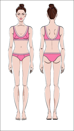Female figure: front and back. Color vector. Human body in linear style. Illustration