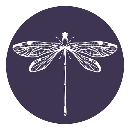 Beautiful icon dragonfly vector illustration.
