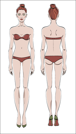 Female figure: front and back. Color vector. Human body in linear style. Vettoriali