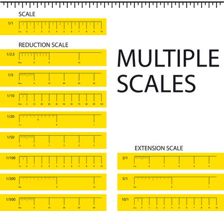 certainty: Multiple scales metric ruler vector illustration