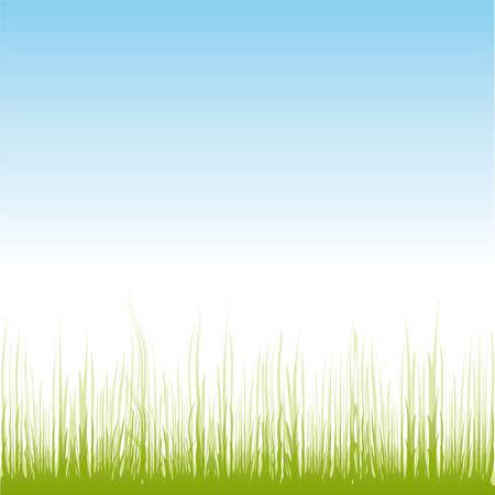 Green grass Stock Vector - 6785165