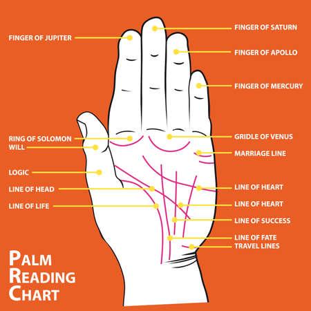 partes del cuerpo humano: Mapa de quiromancia de las líneas principales de palm