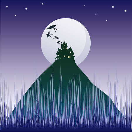 illustration with dark castle silhouette illuminated by moon  Vector