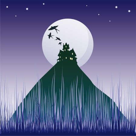 castle silhouette: illustration with dark castle silhouette illuminated by moon  Illustration