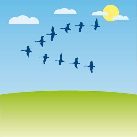 Birds migratory  illustration cartoon Stock Vector - 6919054