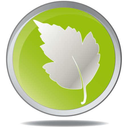 illustration green environmental bubbles on white Stock Vector - 6919093