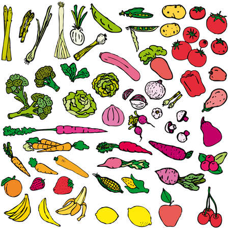žampión: Various Fruits and Vegetables   Ilustrace