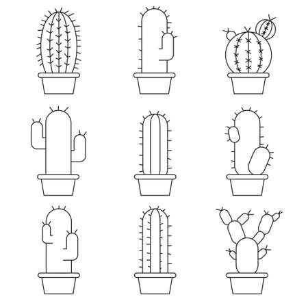succulent: Abstract cactus collection in illustration Illustration