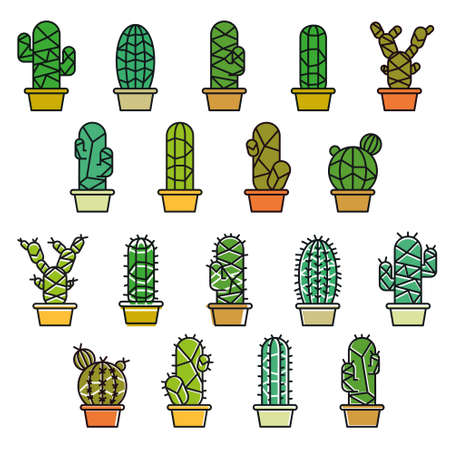 houseplant: Cactus collection in illustration