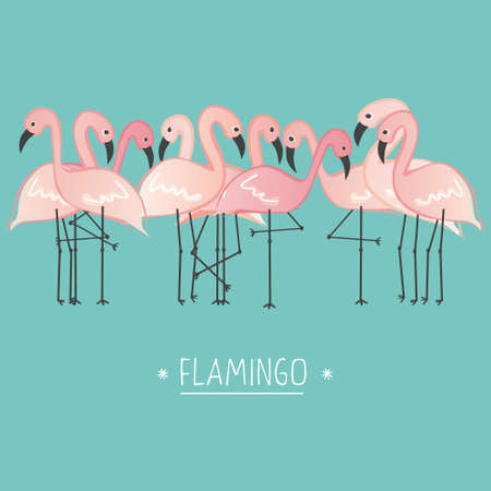 Vector illustration pink flamingo