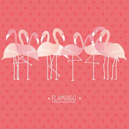 Vector illustration pink flamingo