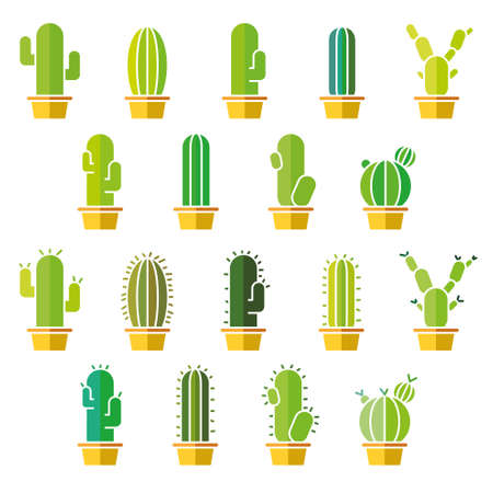 plant in pot: Cactus flat colorful abstract collection in illustration