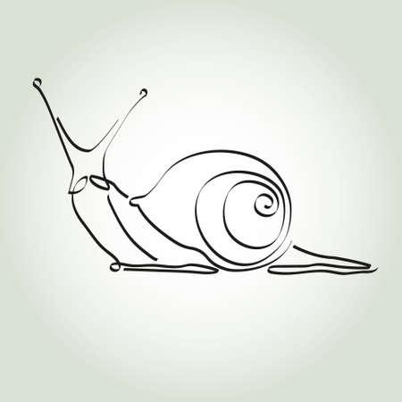 minimal style: Snail in minimal style vector line