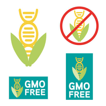 organism: GMO free icon symbol design. Non Genetically Modified Organism sign with corn cob vector illustration.