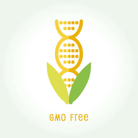 genetically modified organism: GMO free icon symbol design. Non Genetically Modified Organism sign with corn cob vector illustration.