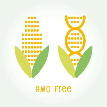 recombinant dna: Genetically Modified Organisms GMO FREE emblem symbol icon vector illustration