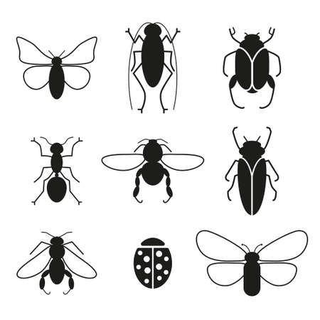 ladybird: Insects vector set silhouette icons