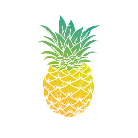 Pineapple modern illustration