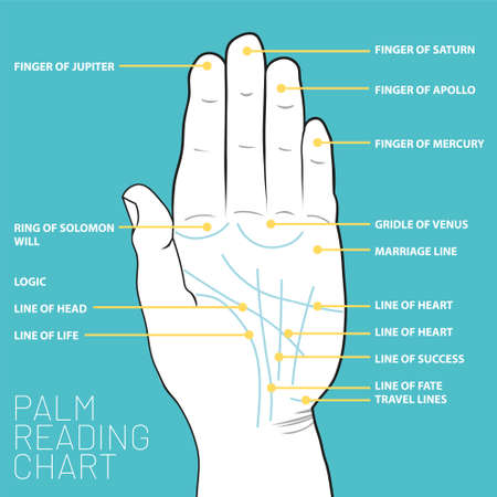 Palm reading chart. Palmistry map of the palms main lines