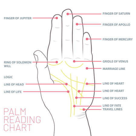 Palm reading chart. Palmistry map of the palm's main lines