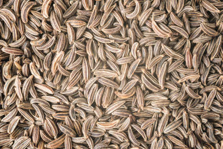 Abstract background with cumin seeds