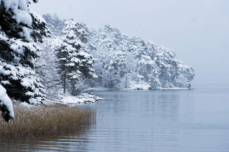 Winter Lake in Sweden photo