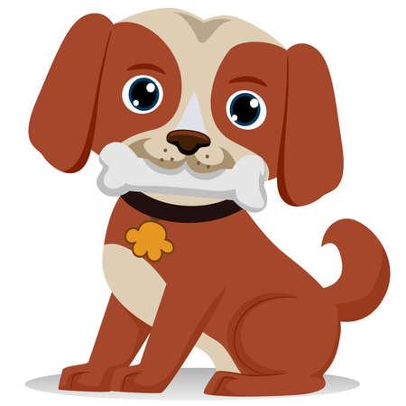 dog bite: Dog biting bone