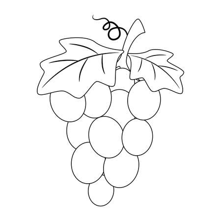 Coloring Book Outlined Grapes