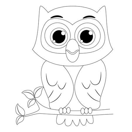 Coloring Book Outlined Owl Illustration