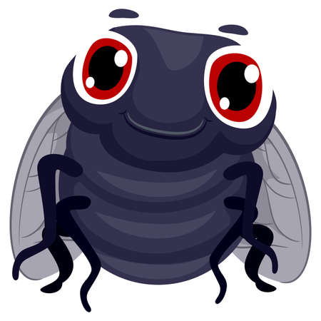 housefly: Vector Illustration of a Fly Illustration