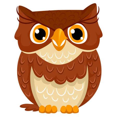 owl illustration: Vector Illustration of a Owl Illustration
