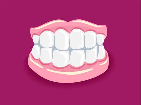 dentures: Vector Illustration of Dentures Illustration