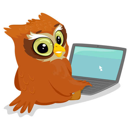 surfing the net: Vector Illustration of an Owl using a Laptop Illustration