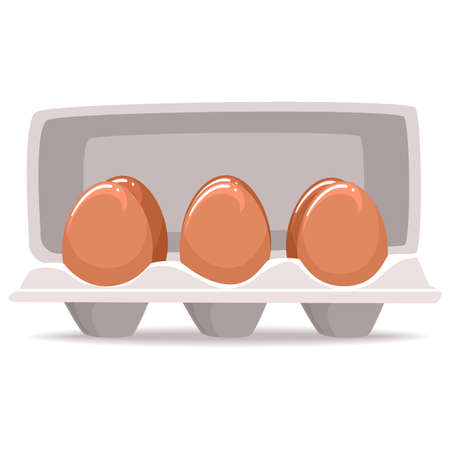Vector Illustration of Organic Eggs inside the Box