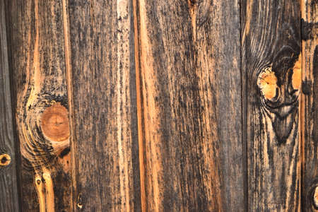 Texture of wood. Stripes and stains on wooden surface photo
