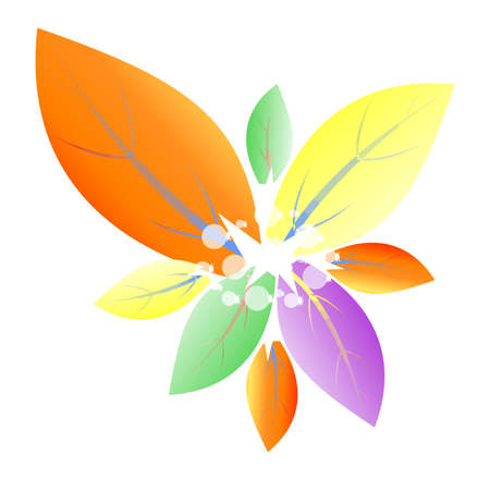 Pattern flower with multicolored petals Vector