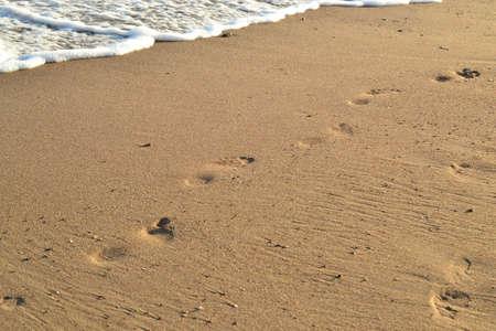footprint sand: Footprint sand on the beach ocean Stock Photo