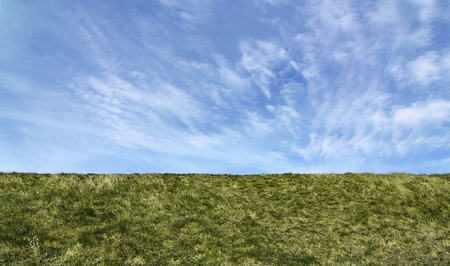Green field. Straight horizon, suitable as background or banner. Stock Photo