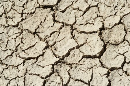 Cracks in dry sun bleached mud. Stock Photo