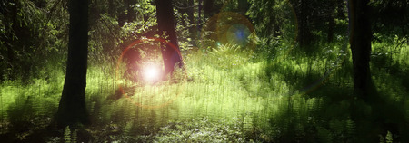 Panorama of deep forest with lush green plants enlighten by mysterious light and flares.